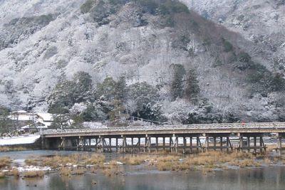 1038arashiyama1_2