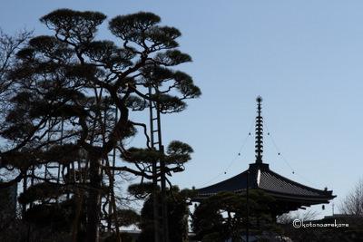 Gokokuji1