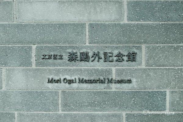 Moriogai2