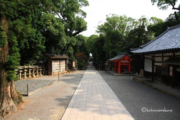 Iwashimizu11