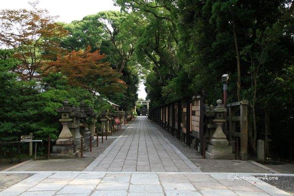 Iwashimizu2_2