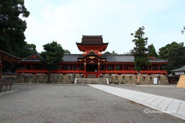 Iwashimizu6