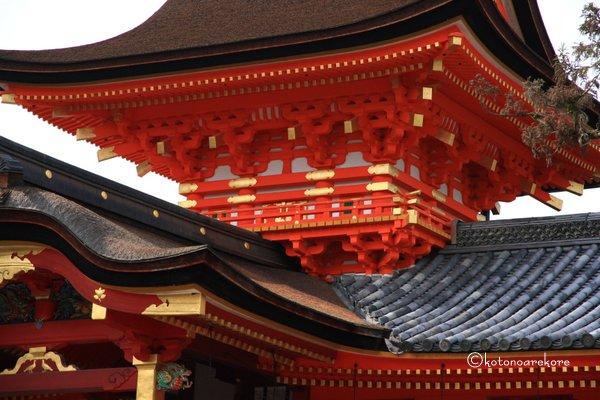 Iwashimizu7