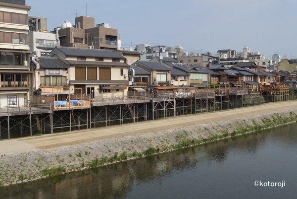 Kamogawa2