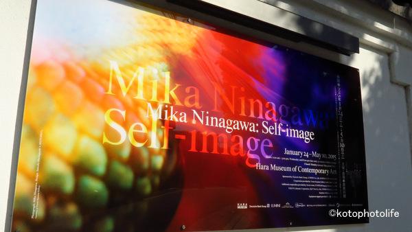 Ninagawa1
