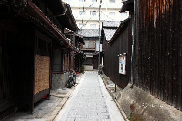 Ayanokoji1