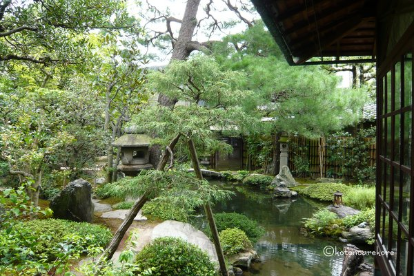 Namikawa2