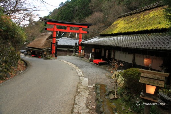 Hiranoya2