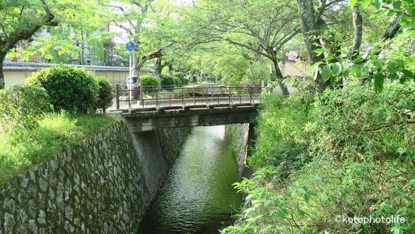 5tetsugaku3_img_9422